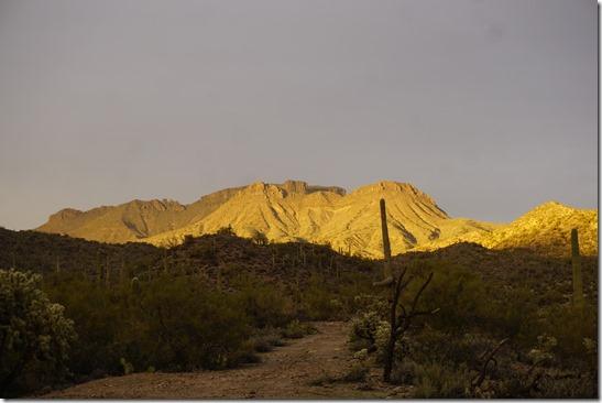 2018-0372-White Canyon AZ